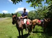 Horseback tour